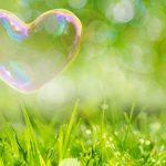 引き寄せの法則ザシークレット 愛の法則 動画