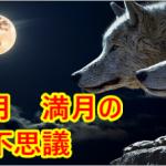願いを叶える新月・満月の不思議パワーで引き寄せ 私の体験